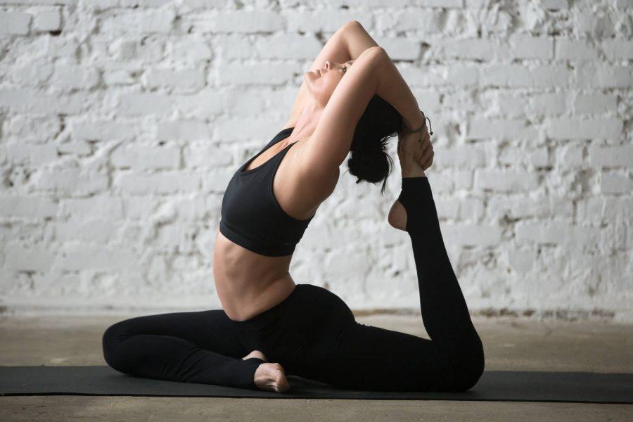 vincentrainer-joga